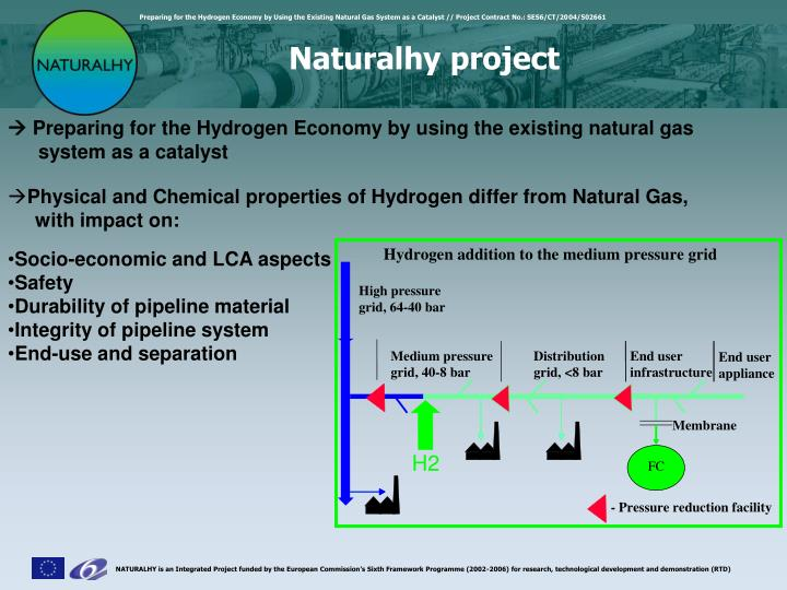 Naturalhy project