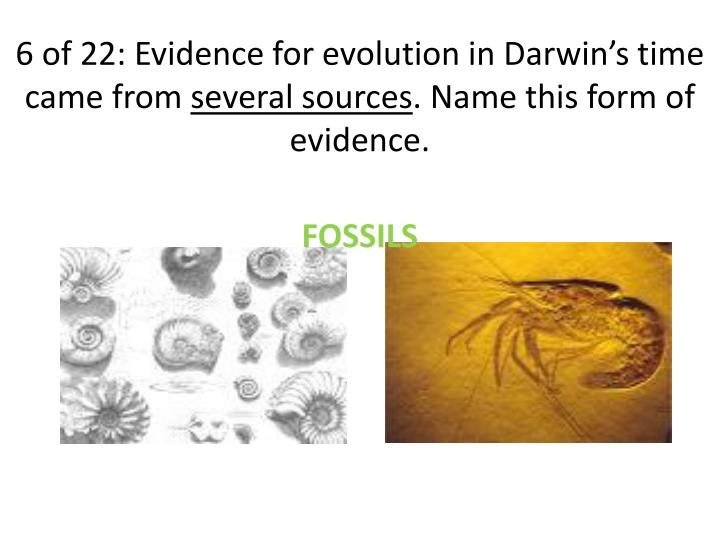 6 of 22: Evidence for evolution in Darwin's time came from