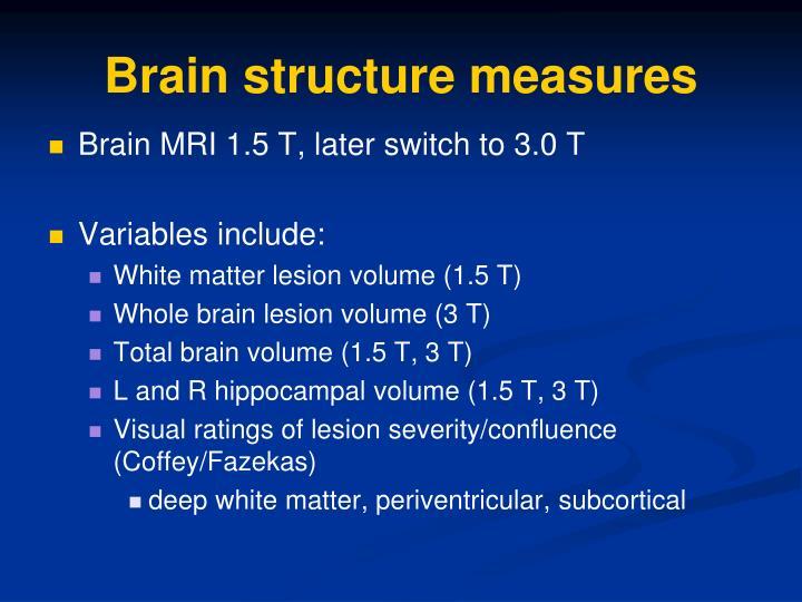 Brain structure measures