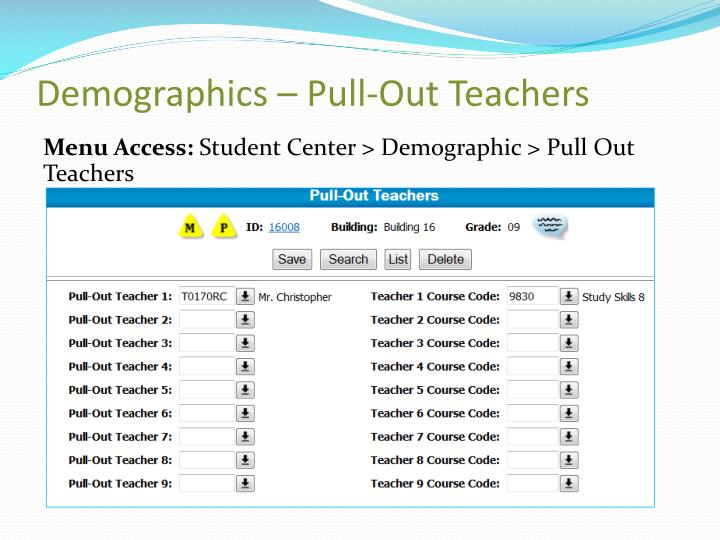 Demographics – Pull-Out Teachers