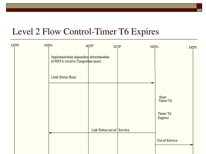 Level 2 Flow Control-Timer T6 Expires
