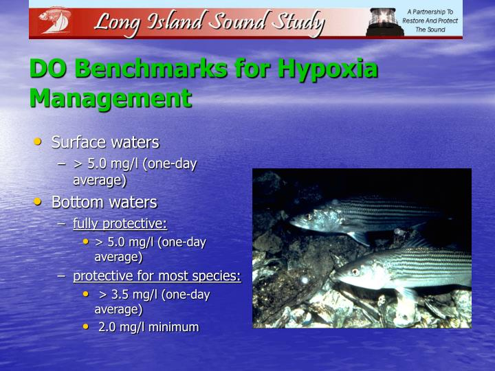 DO Benchmarks for Hypoxia Management
