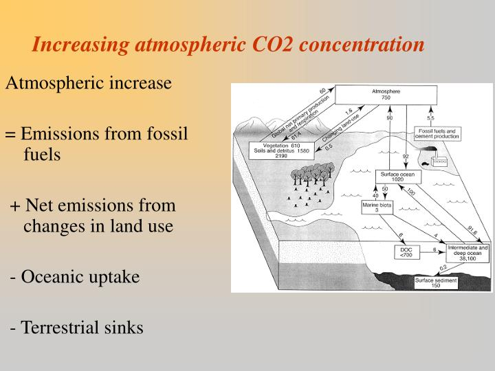 Increasing atmospheric co2 concentration