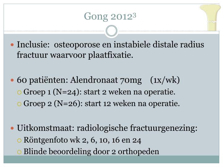 Gong 2012
