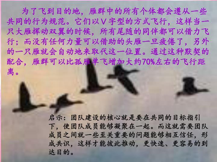 为了飞到目的地,雁群中的所有个体都会遵从一些共同的行为规范。它们以V字型的方式飞行,这样当一只大雁挥动双翼的时候,所有尾随的同伴都可以借力飞行;而没有任何力量可以借助的头雁一旦疲倦了,另外的一只雁就会自动地来取代这一位置。通过这种默契的配合,雁群可以比孤雁单飞增加大约