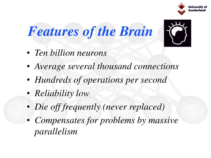 Features of the Brain