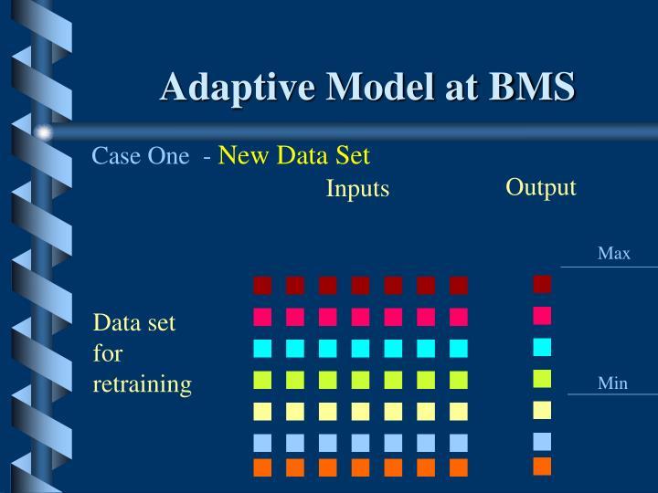Adaptive Model at BMS