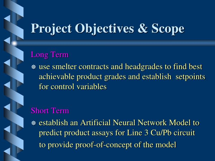 Project Objectives & Scope