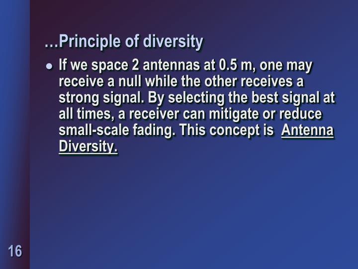 …Principle of diversity
