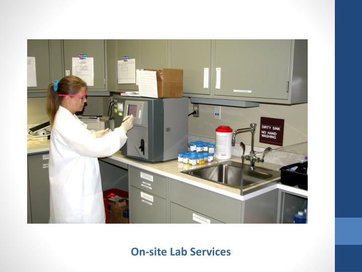 On-site Lab Services