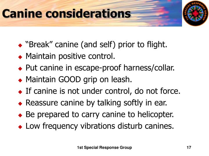 Canine considerations