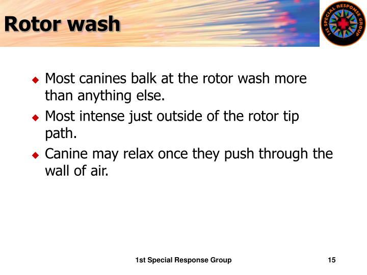 Rotor wash