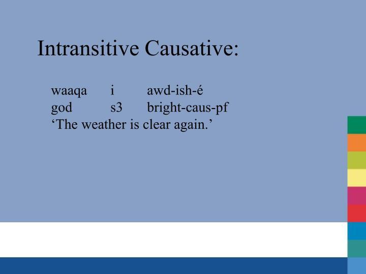 Intransitive Causative: