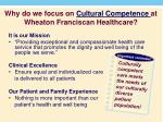 why do we focus on cultural competence at wheaton franciscan healthcare