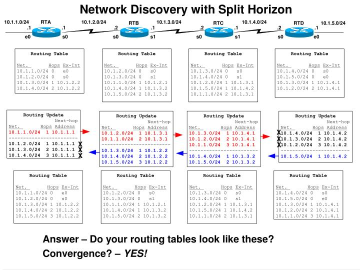 Network Discovery with Split Horizon