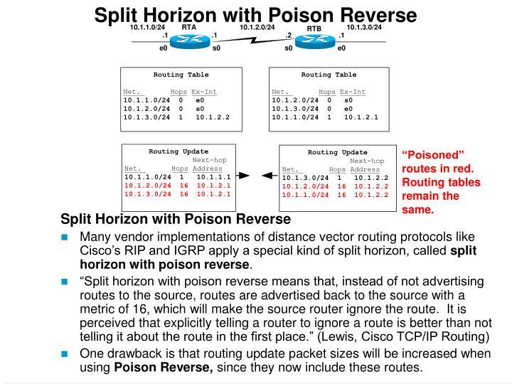 Split Horizon with Poison Reverse