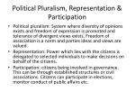 political pluralism representation participation