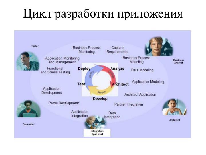 Цикл разработки