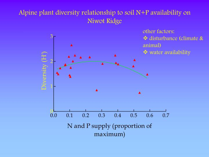 Alpine plant diversity relationship to soil N+P availability on Niwot Ridge