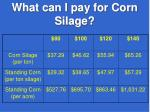 what can i pay for corn silage