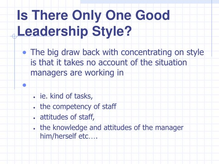 Is There Only One Good Leadership Style?