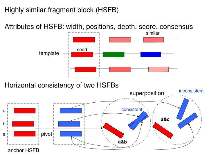 Highly similar fragment block (HSFB)
