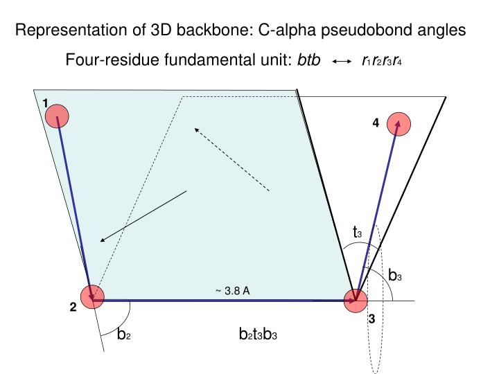 Representation of 3D backbone: C-alpha pseudobond angles