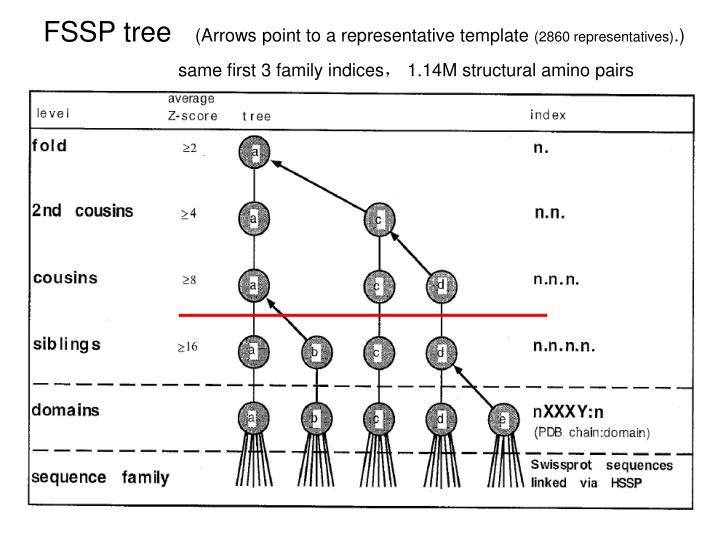 FSSP tree