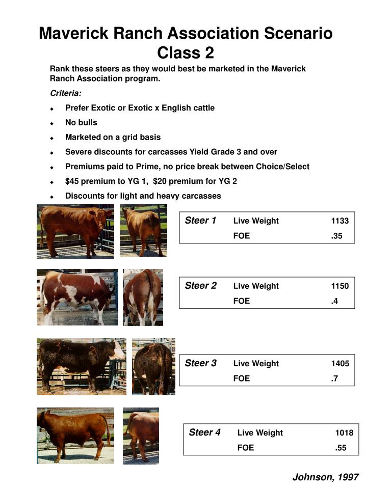 Maverick Ranch Association Scenario