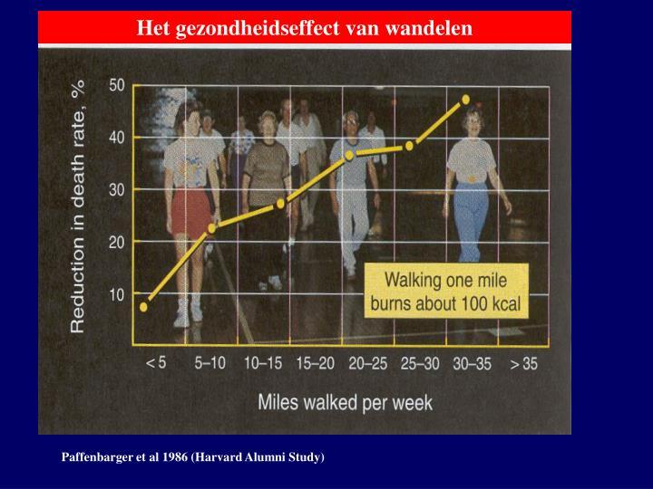 Het gezondheidseffect van wandelen