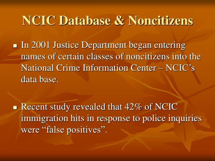 NCIC Database & Noncitizens