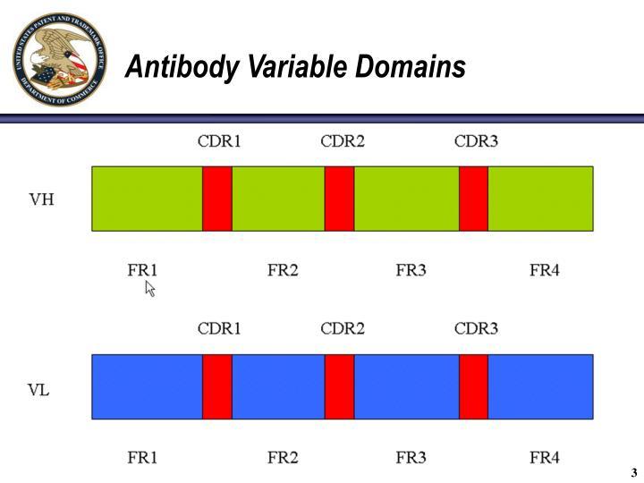 Antibody variable domains