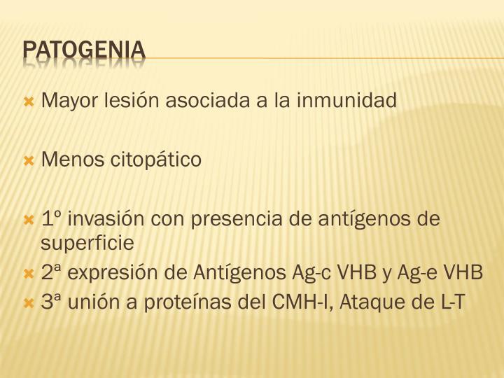 Mayor lesión asociada a la inmunidad