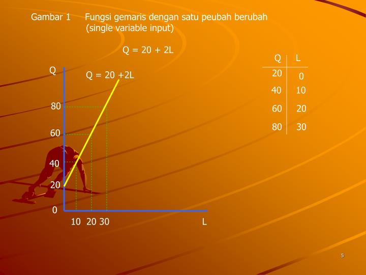Gambar 1     Fungsi gemaris dengan satu peubah berubah (single variable input)