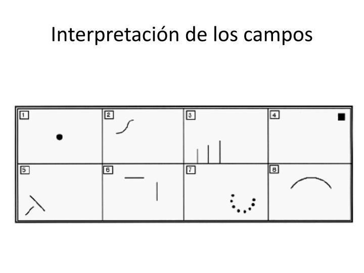 Interpretación de los campos