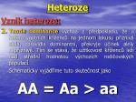 heteroze2