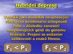 hybridn deprese