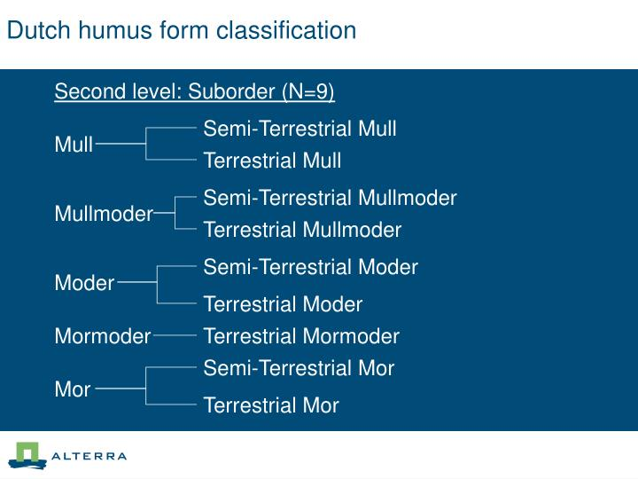Dutch humus form classification