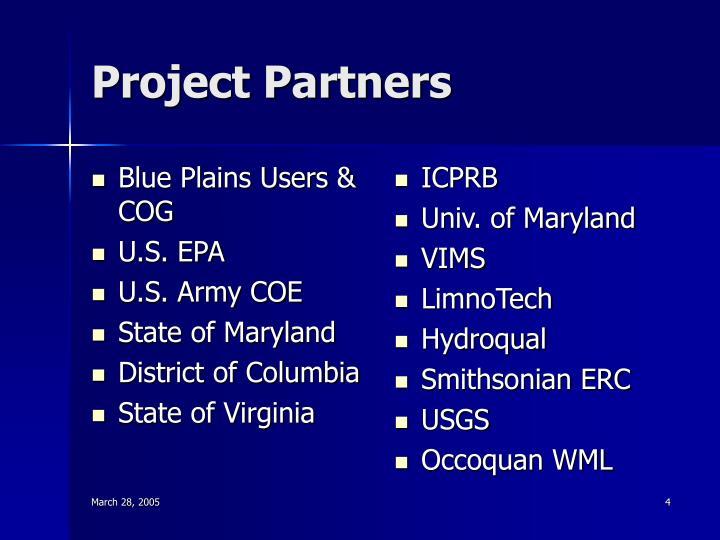 Blue Plains Users & COG