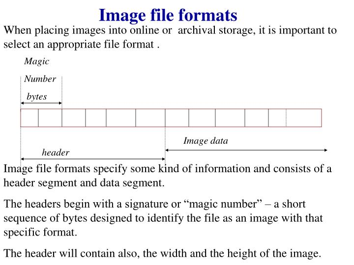 When placing images into online or  archival storage, it is important to select an appropriate file format .