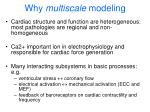 why multiscale modeling