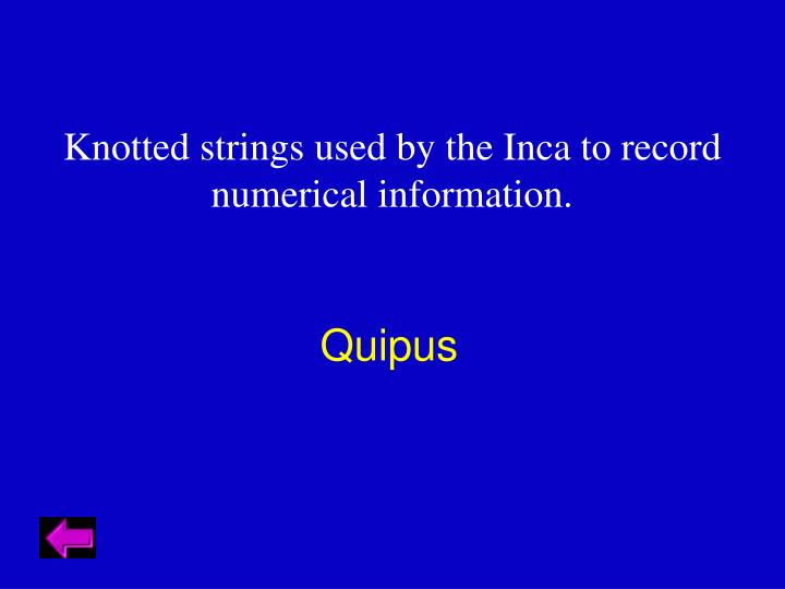 Knotted strings used by the Inca to record numerical information.