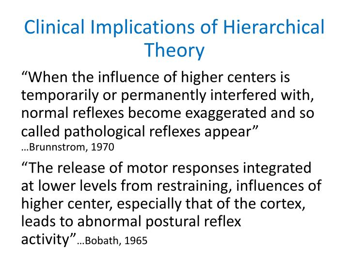 Clinical Implications of Hierarchical Theory