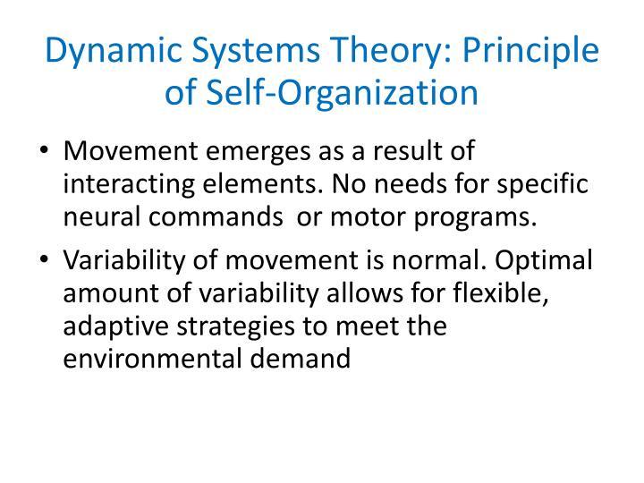 Dynamic Systems Theory: Principle of Self-Organization