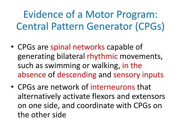 Evidence of a Motor Program: