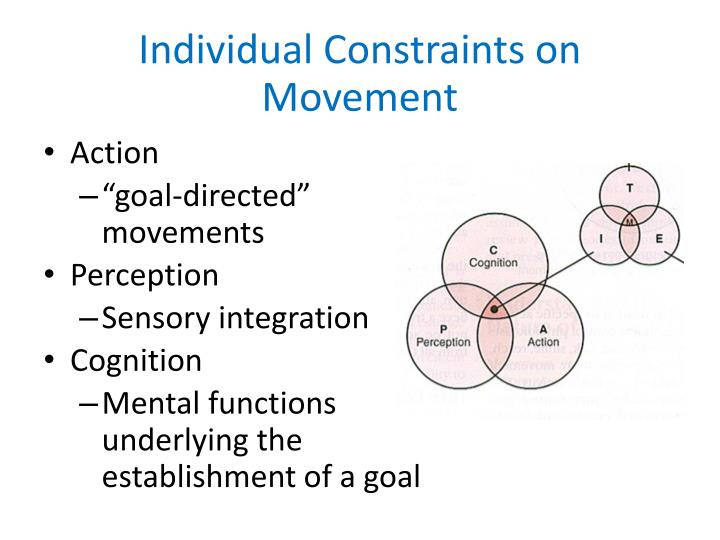 Individual Constraints on Movement