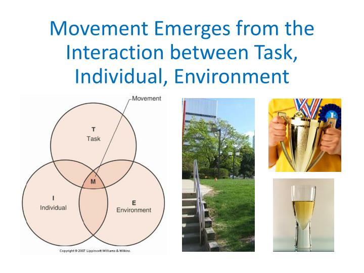Movement Emerges from the Interaction between Task, Individual, Environment