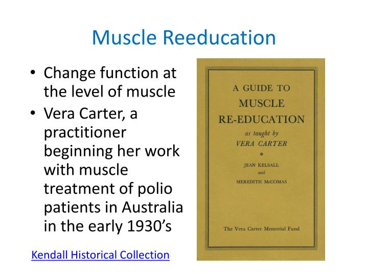 Muscle Reeducation