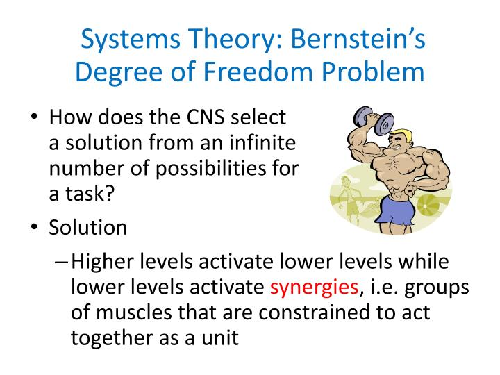 Systems Theory: Bernstein's Degree of Freedom Problem