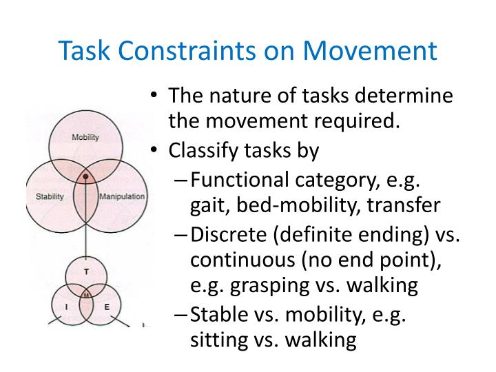 Task Constraints on Movement